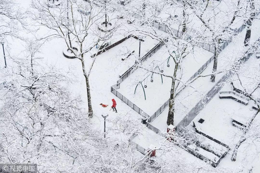 今日大雪,愿你在这美好的冬景里,感受温暖,继续前行。