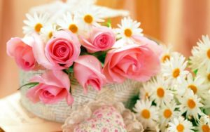 玫瑰与爱情......